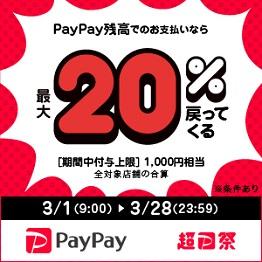 超PayPay祭最大+20%還元(千円まで)