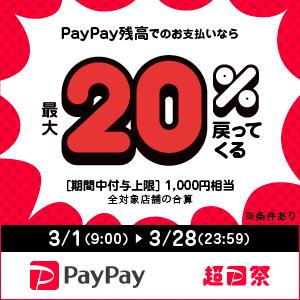 超PayPay祭最大+20%(千円まで)還元